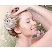 洗发及护发 (6)